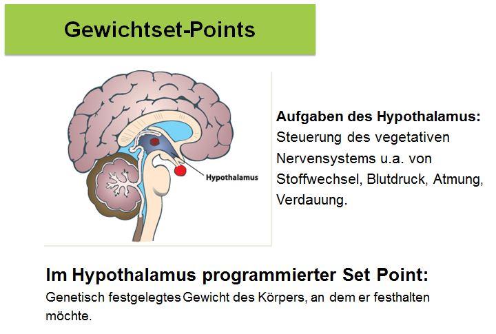 Stoffwechselkur Set Point-1