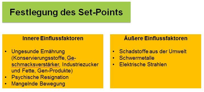 Stoffwechselkur Set Point-2